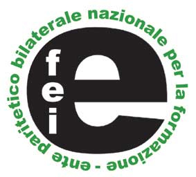 Efei Logo Martorna Consulting
